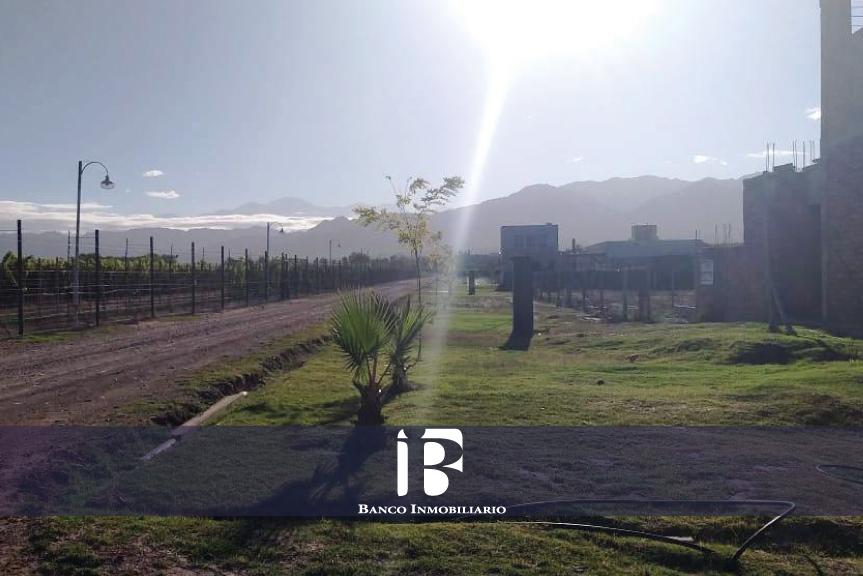 4000m2 Viñas de Ortiz, Luján de Cuyo