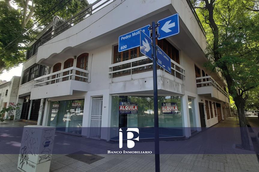 Local Comercial/Oficinas Pedro Molina